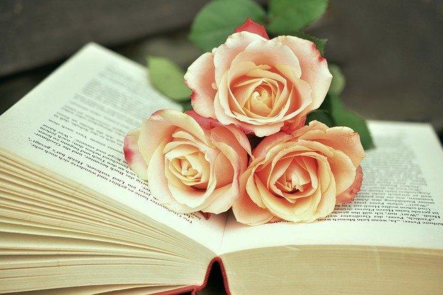 فوائد قراءة الكتب للإنسان